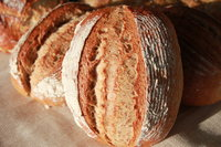 Artisan Sourdough Basic Bread Making Course